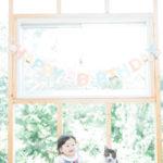 1歳バースデー撮影!猫ちゃんの置物風なにかと一緒に - 宇都宮のフォトスタジオ イマピクトで