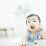 6ヶ月、ベビー、ハーフバースデー!俯せで - 宇都宮のフォトスタジオ イマピクトで