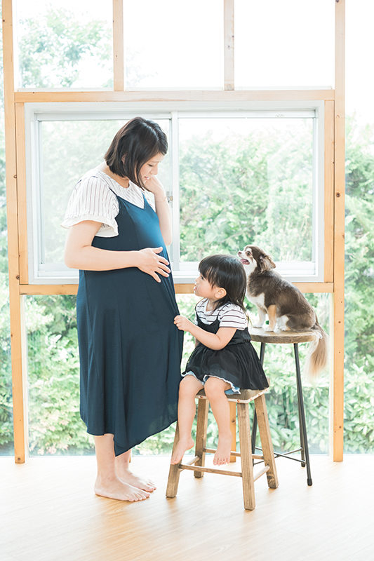 りおんちゃん、2歳!ママのマタニティ撮影。チワワのメルも一緒に。