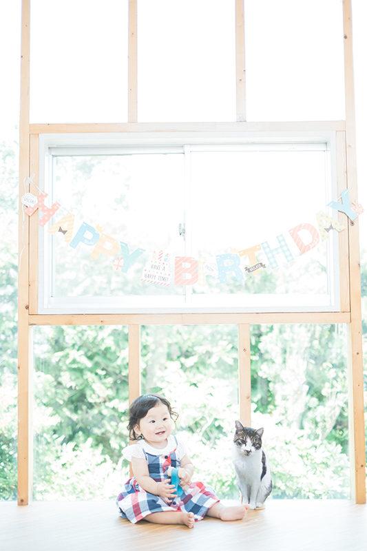 こよいちゃん1歳バースデー、4歳の猫のいちご(写真と段ボール製)と