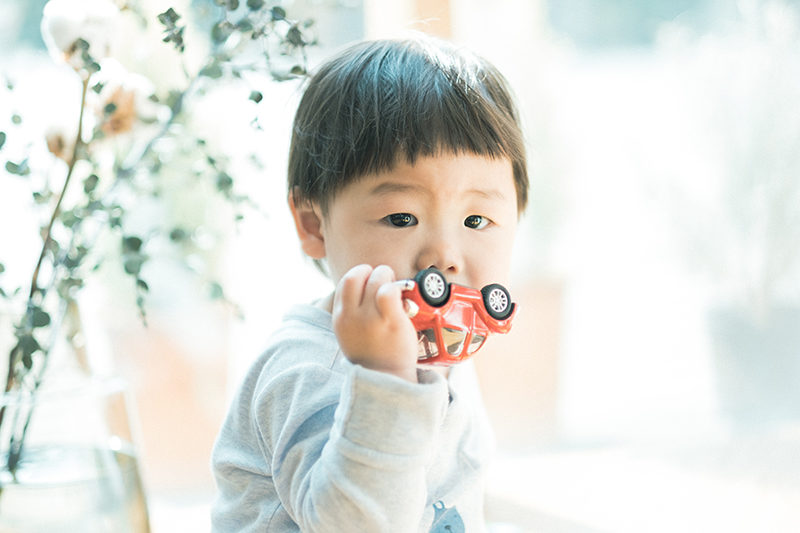 バースデーフォト、1歳、こうせいくん!お気に入りのおもちゃ