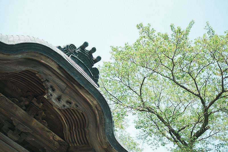 宇都宮二荒山神社、お宮参り出張ロケーション撮影、かなとくん!宇都宮二荒山神社