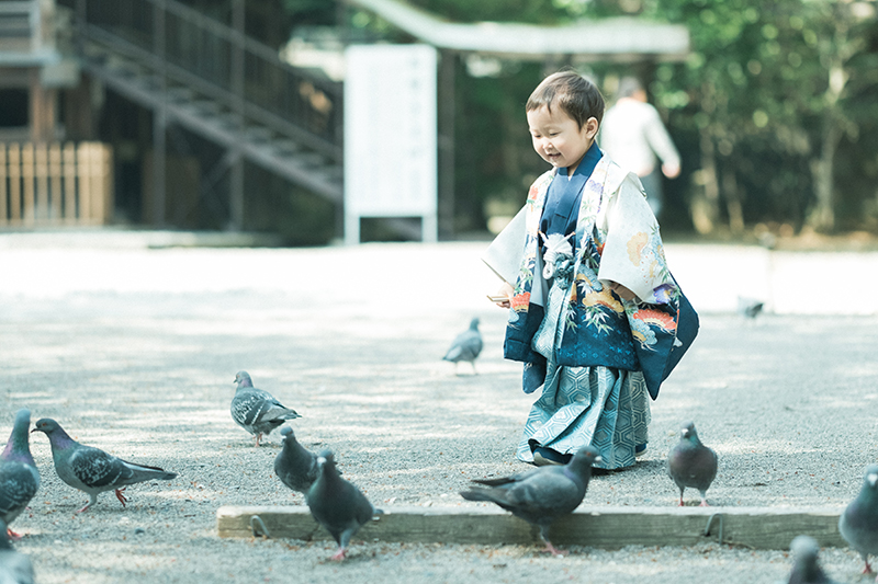 宇都宮二荒山神社、お宮参り出張ロケーション撮影、かなとくん!鳩