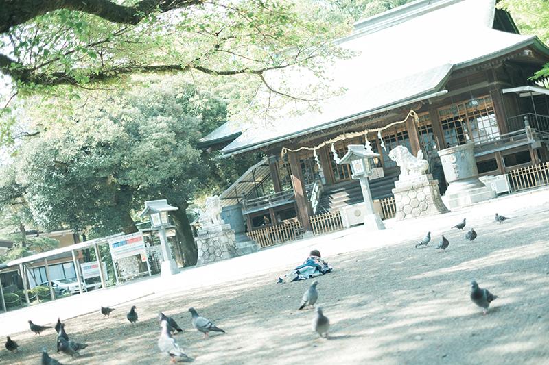 宇都宮二荒山神社、お宮参り出張ロケーション撮影、かなとくん!転ぶ2