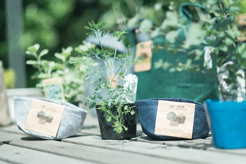 植物植え替え、Root Pouchの不織布製植木鉢、小さいサイズ
