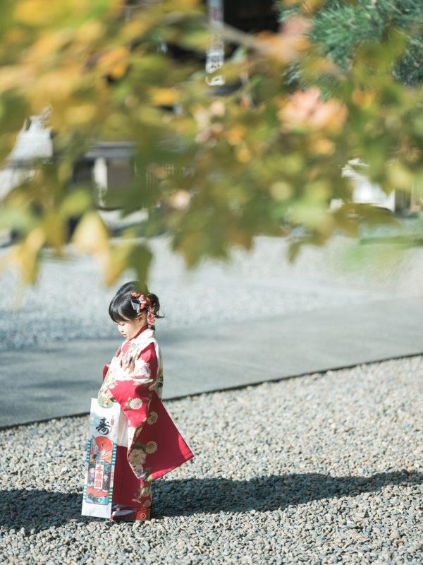 宇都宮二荒山神社、出張撮影、わかちゃん!3歳七五三、千歳飴