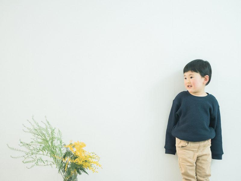3歳バースデーフォト、そうちゃん!ミモザ