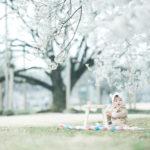 下野市出張ロケーション撮影、桜、はなのちゃん!桜の木の下で