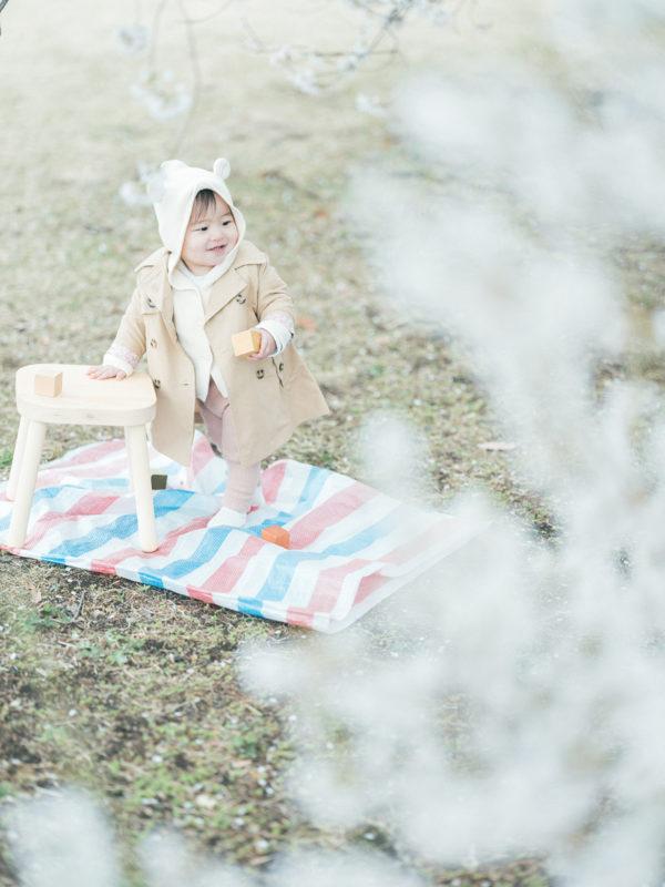 下野市出張ロケーション撮影、桜、はなのちゃん!つかまり立ち