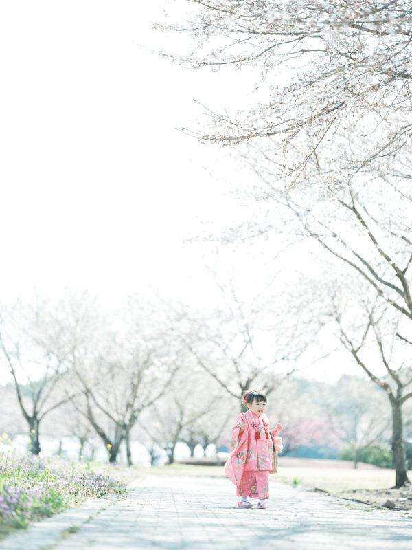 ろまんちっく村、桜ロケーション!3歳七五三、はなちゃん!