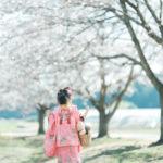 ろまんちっく村、桜ロケーション!3歳七五三、はなちゃん!桜沢山