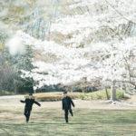 中学入学記念、桜