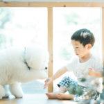 3歳バースデーフォト、あゆむくん!愛犬わさびと