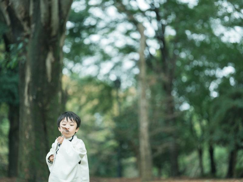 5歳七五三、こうちゃん!中央公園ロケ!落ち葉