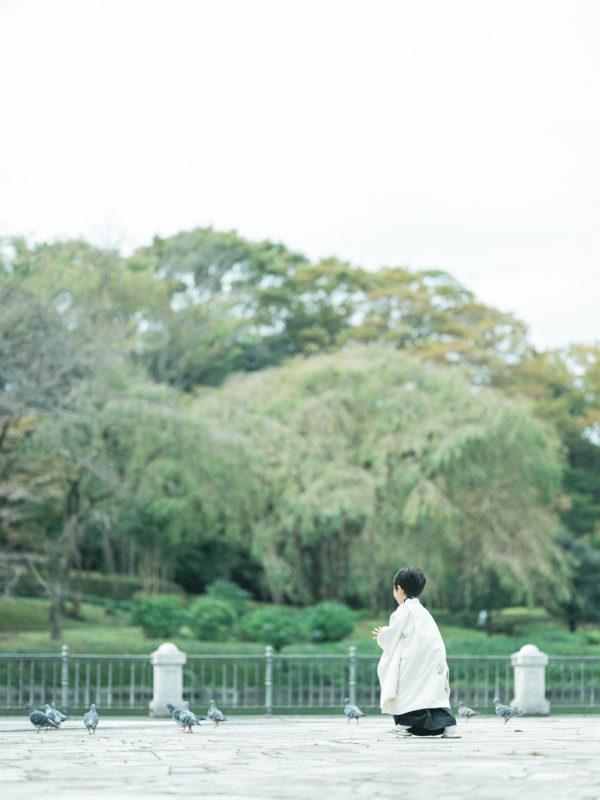 5歳七五三、こうちゃん!中央公園ロケ!鳩
