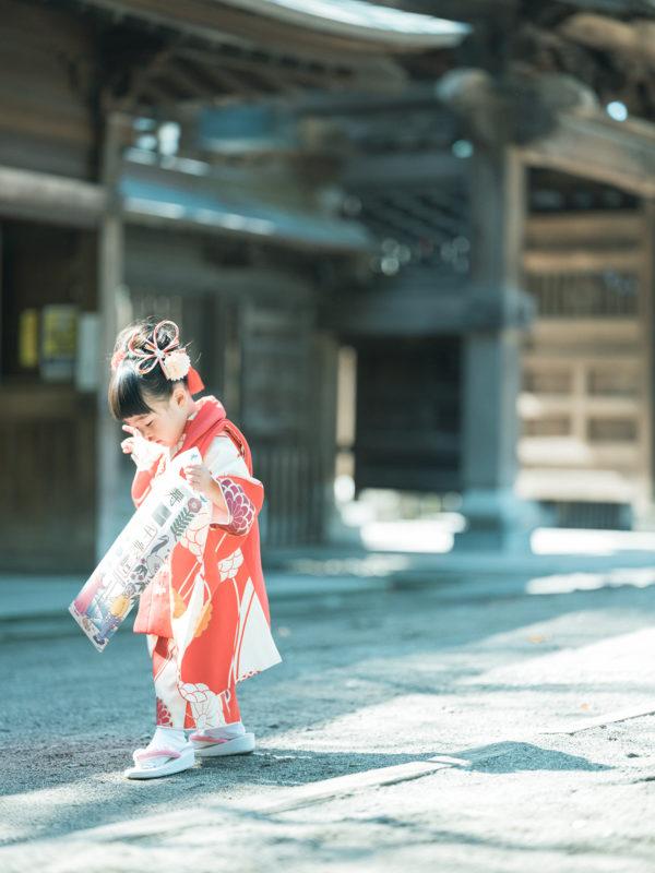 宇都宮二荒山神社、七五三ロケ、ときちゃん!パパブブレの千歳飴