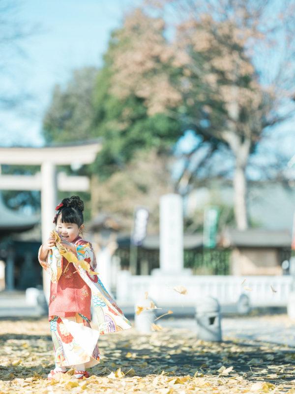 小山市、須賀神社、3歳七五三、すーちゃん!落ち葉、紅葉