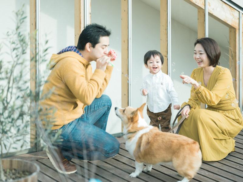 たっくん、バースデー!家族写真、シャボン玉、コーギー