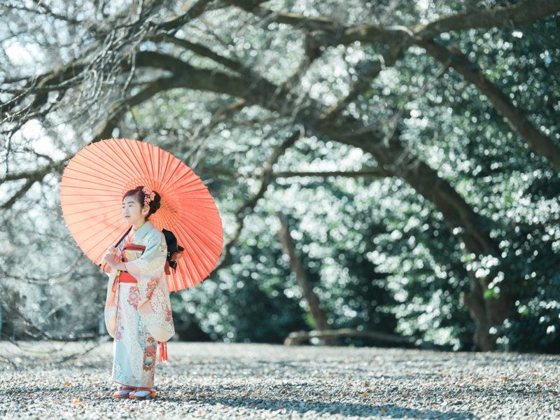 7歳七五三、護国神社ロケ、ゆうりちゃん!番傘