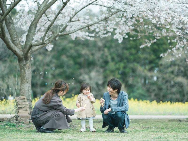 ろまんちっく村、桜ロケ、はなのちゃん!家族写真、桜