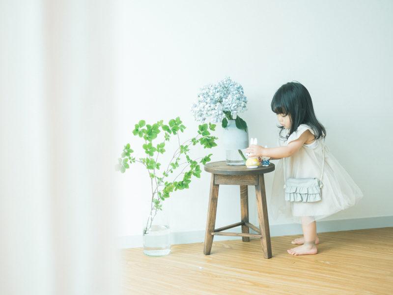 2歳バースデーフォト、ことちゃん!紫陽花、やしおつつじ