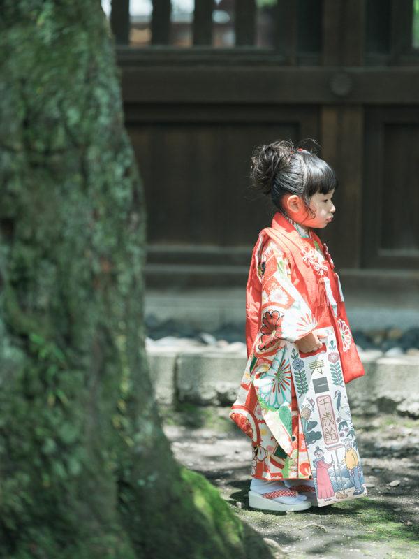 宇都宮二荒山神社、3歳七五三、めぐちゃん!パパブブレ