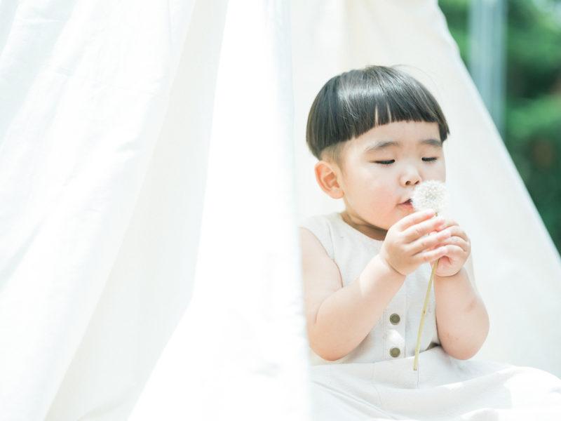 2歳バースデーフォト、むうくん!たんぽぽの綿毛