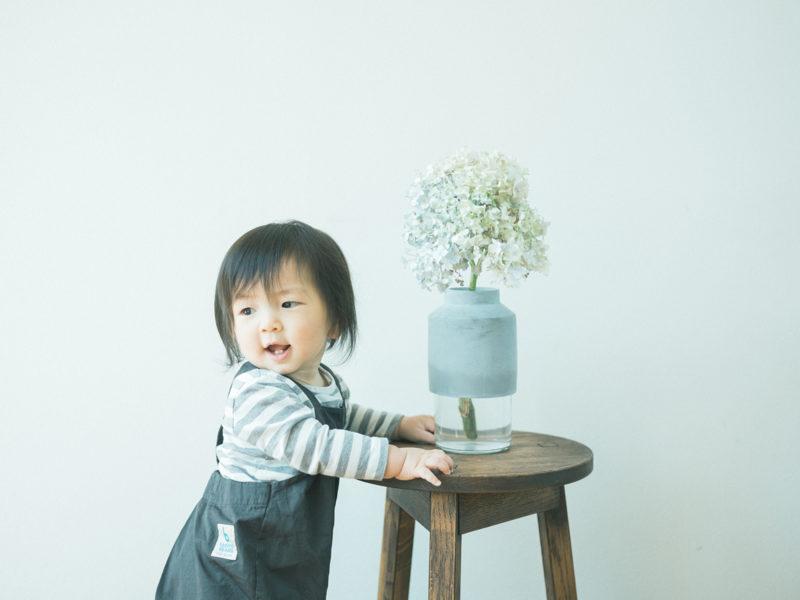 1歳バースデーフォト、りょうたろうくん!紫陽花、ウィルマンベース