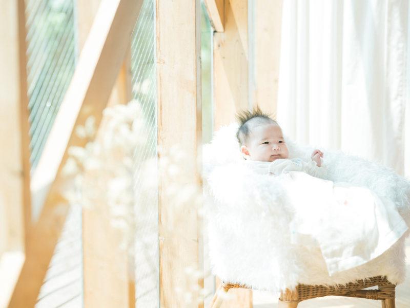 お宮参り、ゆらちゃん!赤ちゃん椅子