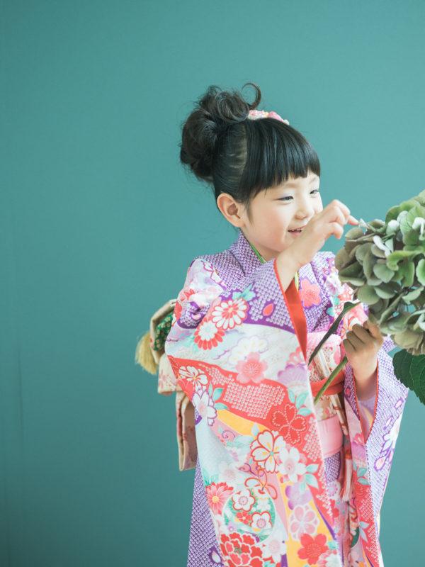 7歳七五三、なつめちゃん!紫陽花