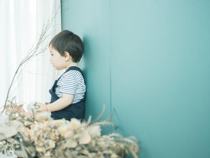 あおばくん、1歳バースデーフォト!青バック、ドライフラワー