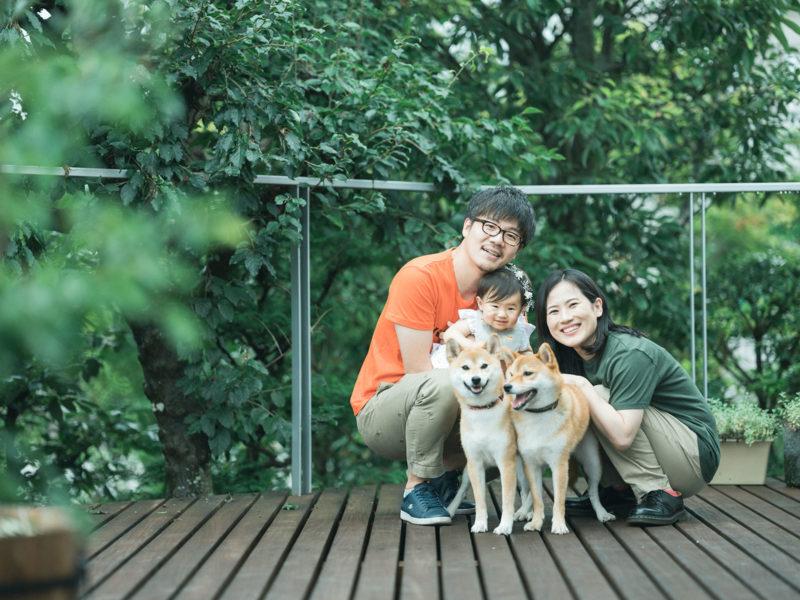 ちひろちゃんファミリー、家族写真!柴犬と