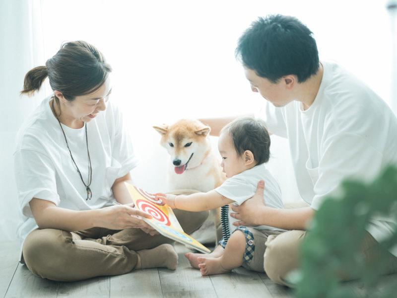 さくくん、家族写真!柴犬ちゃちゃと一緒に