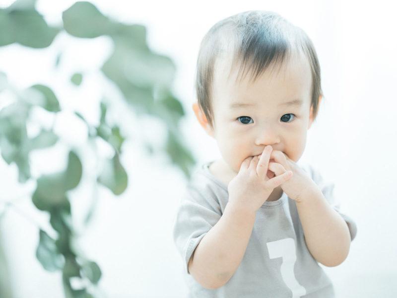 1歳バースデーフォト、はじめくん!可愛い
