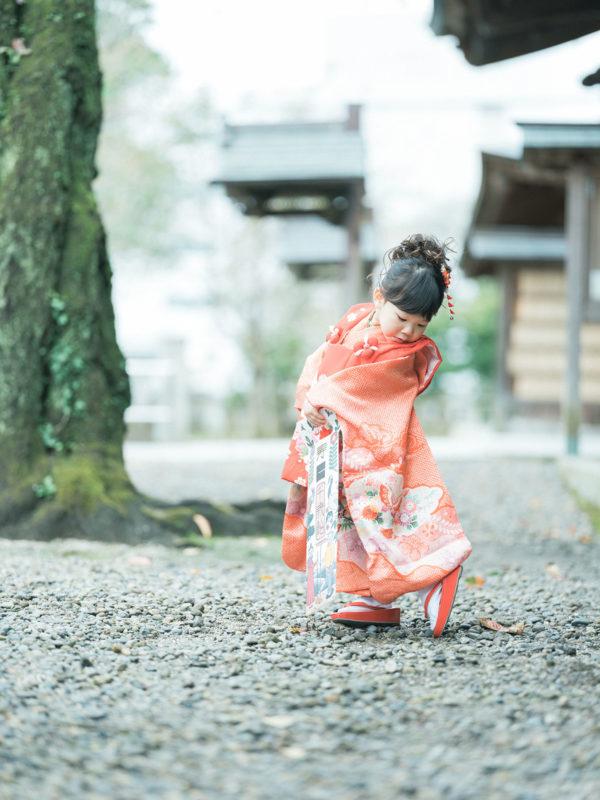 宇都宮二荒山神社ロケ、なつのちゃん、3歳七五三!千歳飴、パパブブレ