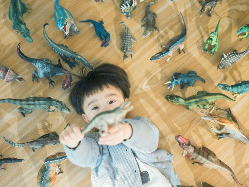 4歳バースデーフォト、そうすけくん!恐竜と