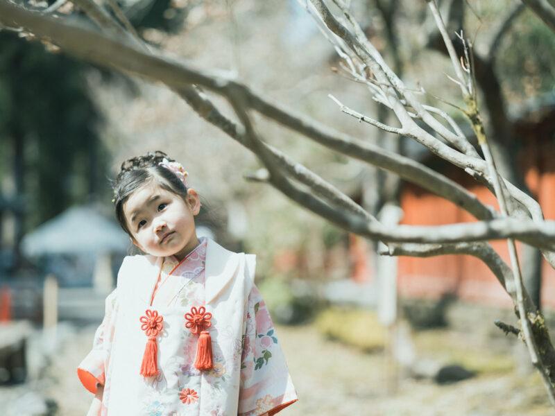日光二荒山神社、七五三ロケ!3歳七五三ほのかちゃん、可愛い