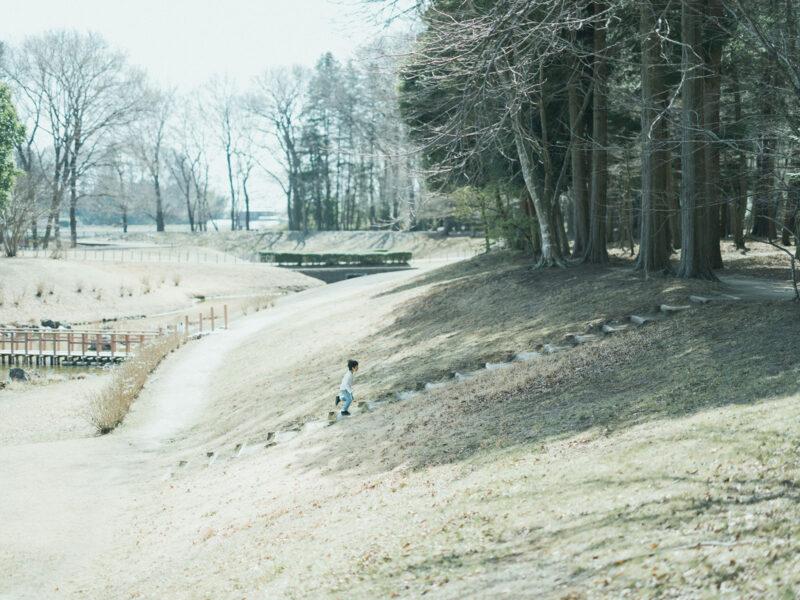 みずほの自然の森公園、入学記念ロケ、こうちゃん!走る