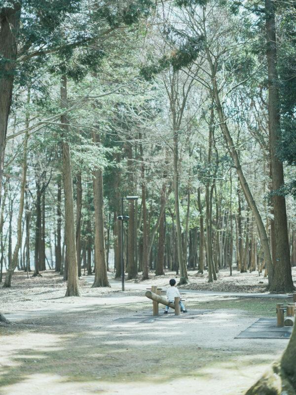 みずほの自然の森公園、入学記念ロケ、こうちゃん!遊具