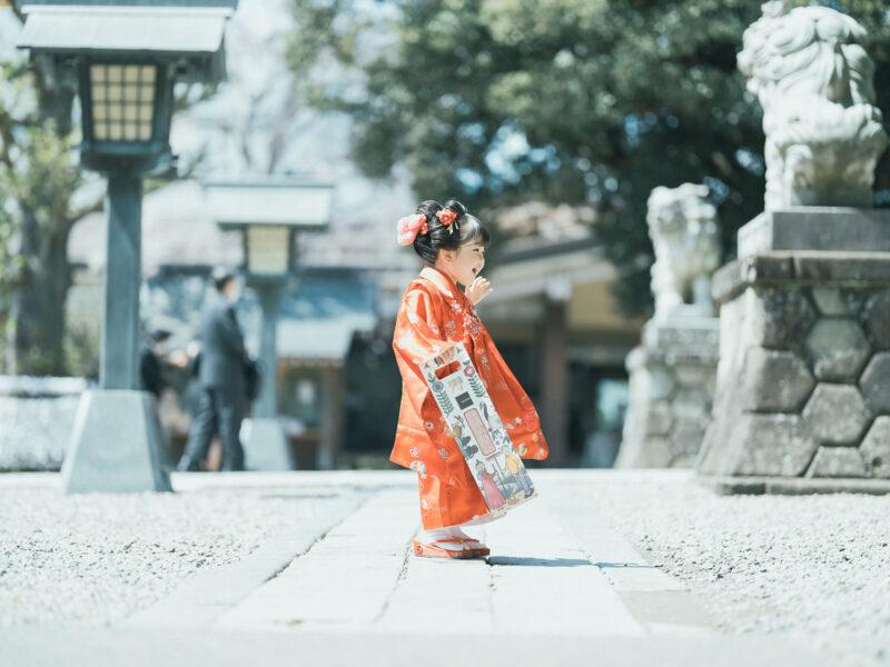 宇都宮二荒山神社ロケ、3歳七五三、さくらちゃん!千歳飴