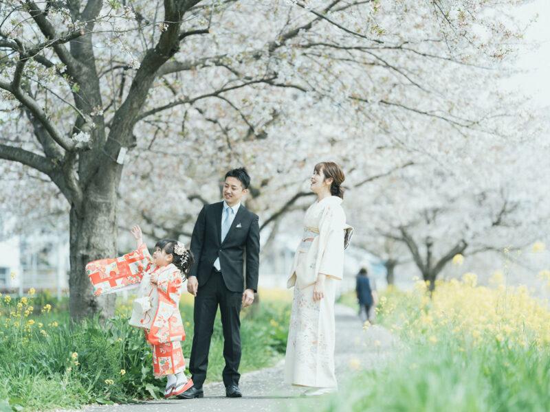 3歳七五三、出張撮影、ことねちゃん!桜の木と家族写真