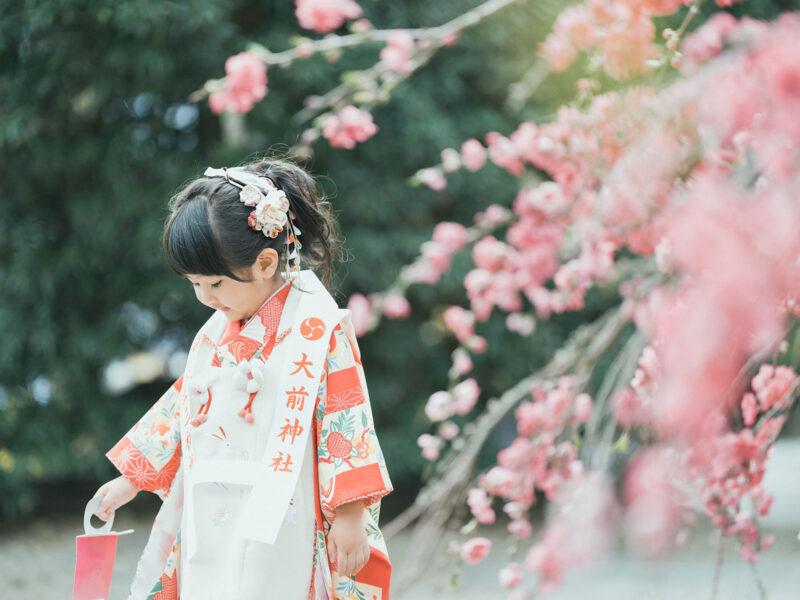 3歳七五三、出張撮影、ことねちゃん!大前神社、ご祈祷