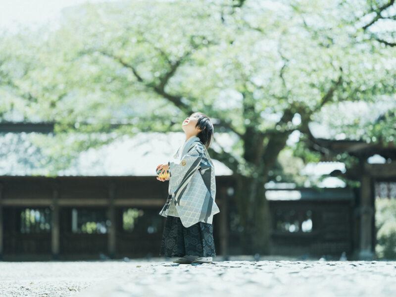 宇都宮二荒山神社、七五三ロケ、5歳七五三、あさひくん!鞠
