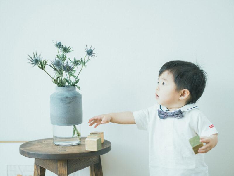 1歳バースデーフォト、げんきくん!切り花