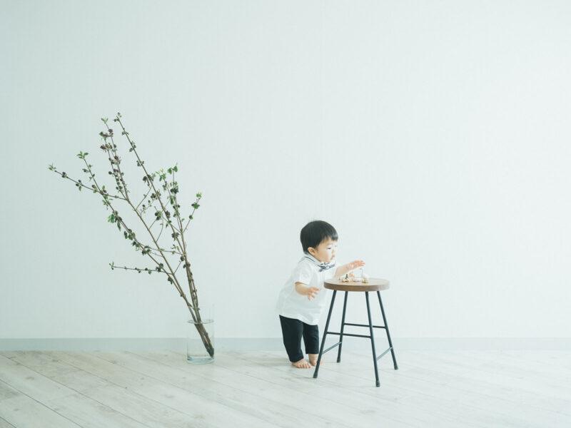 1歳バースデーフォト、げんきくん!枝物、セーラー