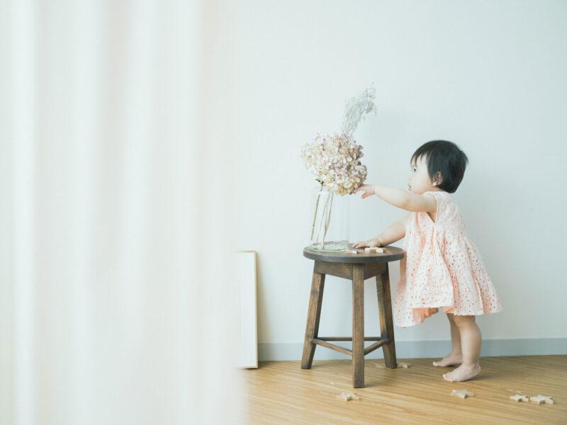 1歳バースデーフォト、えまちゃん!紫陽花