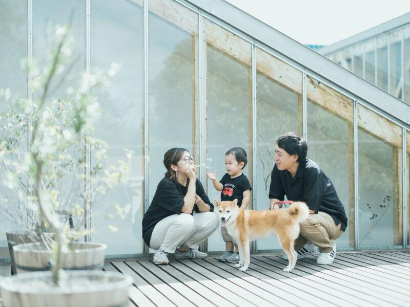 2歳バースデーフォト、さくくん!柴犬、家族写真